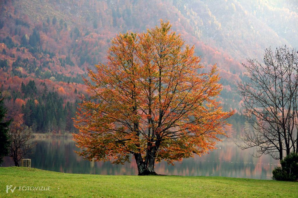 Bohinj v jeseni